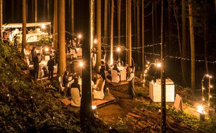 「木を食べる」フルコース!奥多摩の森で一夜限りのレストランをオープン - 田村 浩二